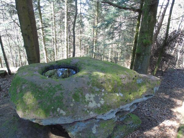 Wustenberg 8 - pierre dite des Druides